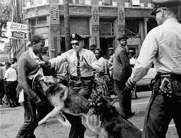 civil-rights-dogs